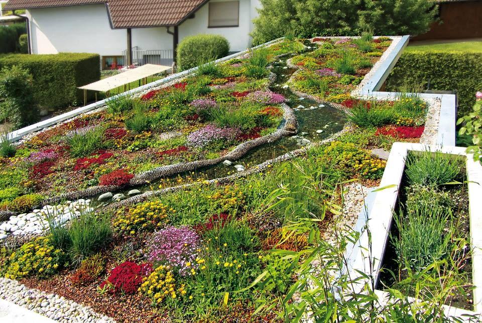 Zinco Techo Verde Green Roof Cubierta Ajardinada Cubierta Verde Techos Verdes Cubierta Verde Techos Jardin