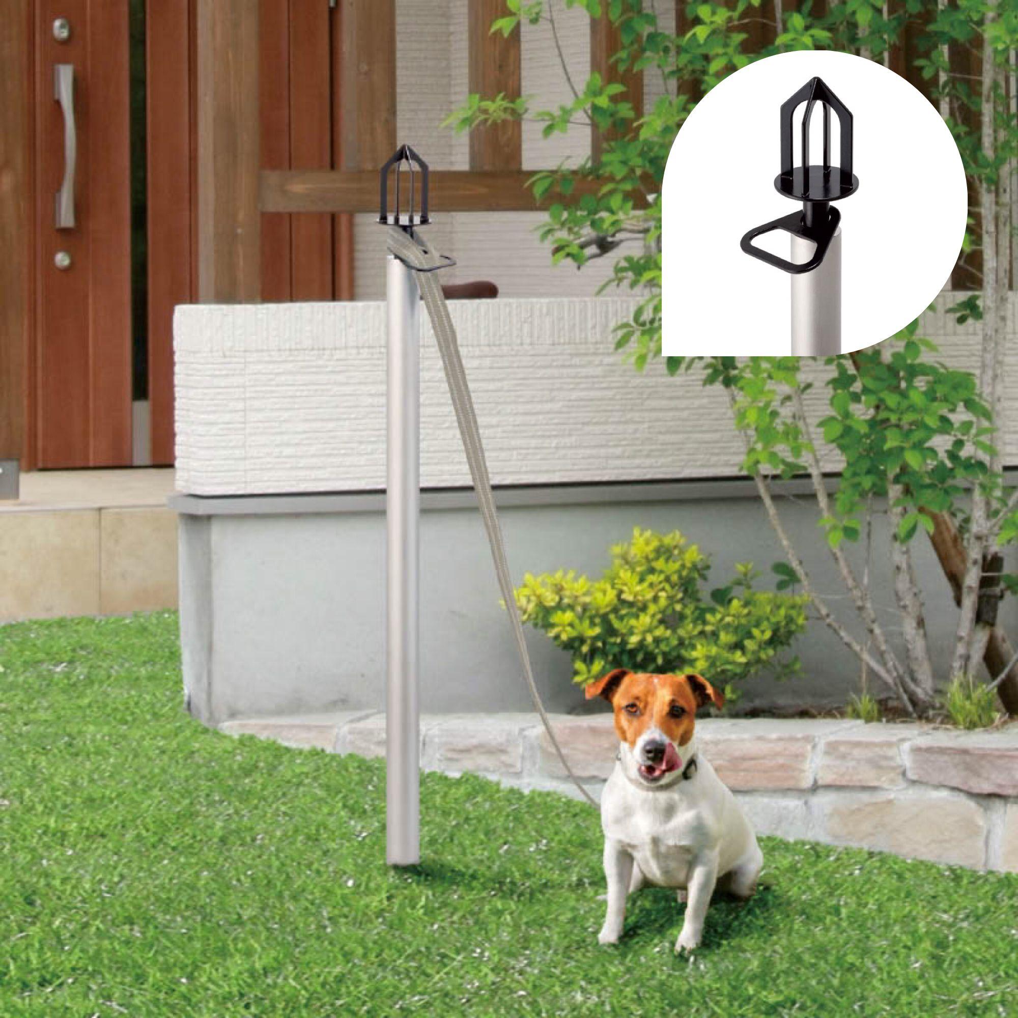 ドックスタンド 犬と暮らす家 小さなガーデニング ドッグラン
