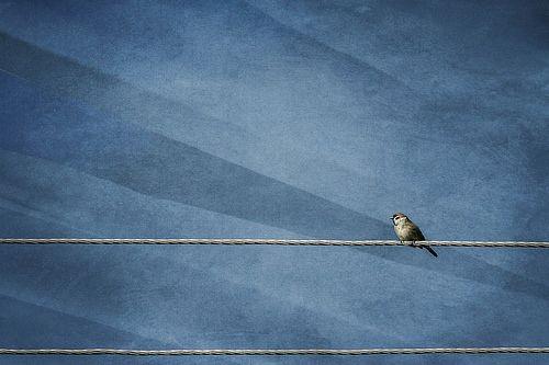Waiting   Flickr - Photo Sharing! - Fine art minimalism photography