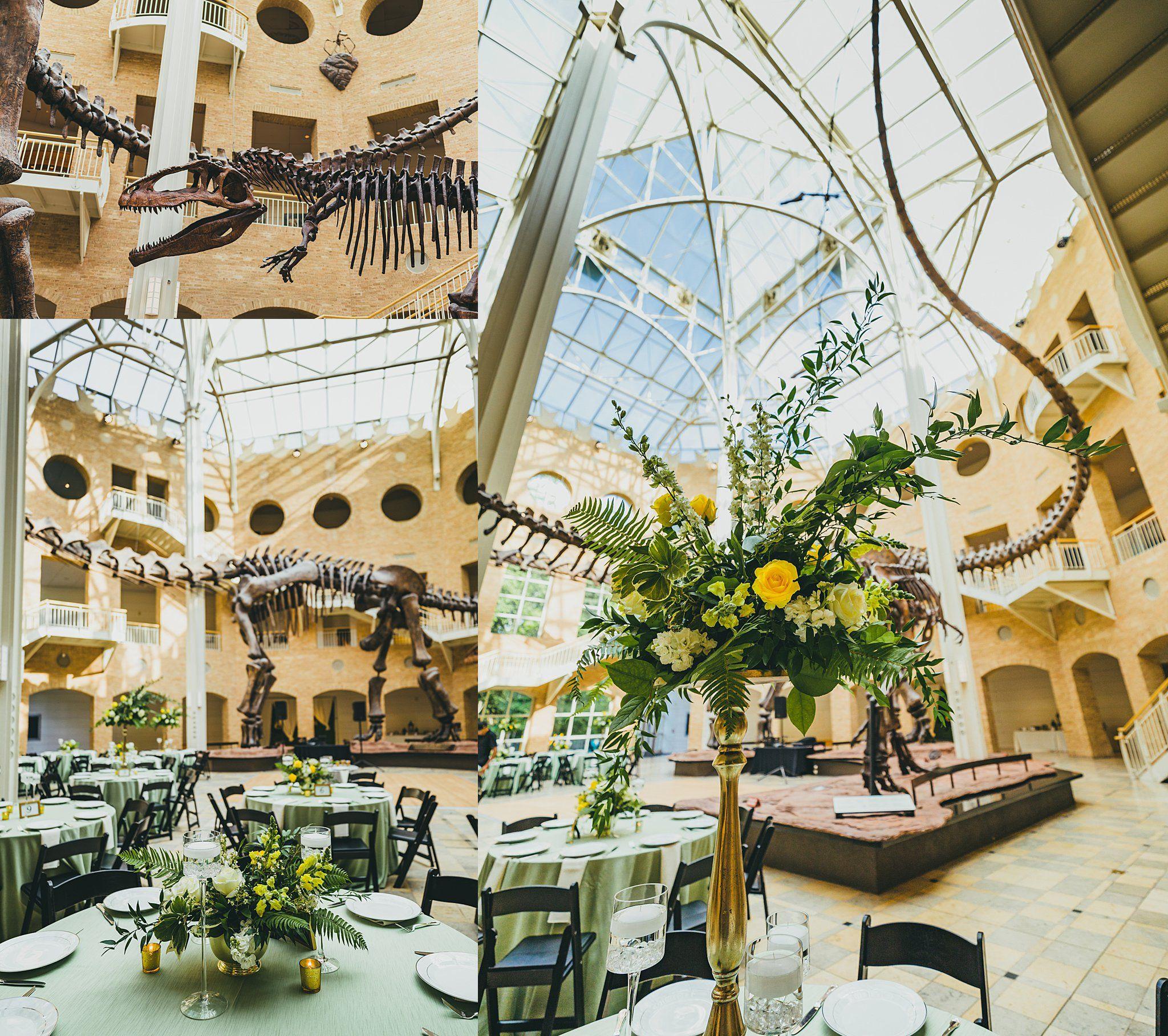 Fernbank Museum Of Natural History Wedding Details Reception In 2020 Atlanta Wedding Photographer Dinosaur Wedding Atlanta Wedding