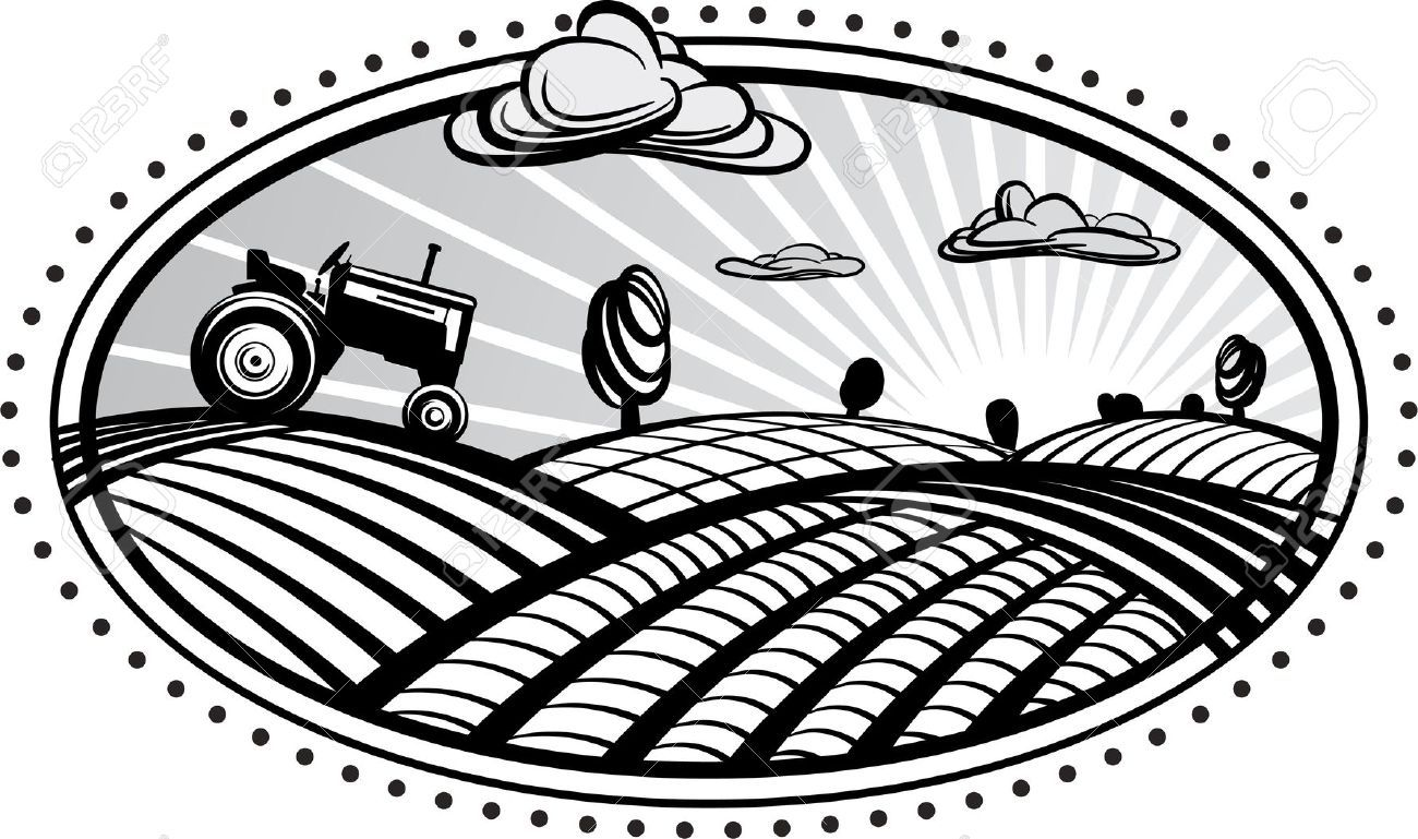 Agriculture Landscape With Tractor Vector Illustration In The Tractors Vector Illustration Illustration