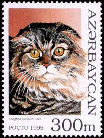 Hands Of Hope Needlework Adli Kullanicinin Cat Stamps Panosundaki Pin Posta Pulu Kopek Kedi Kopek