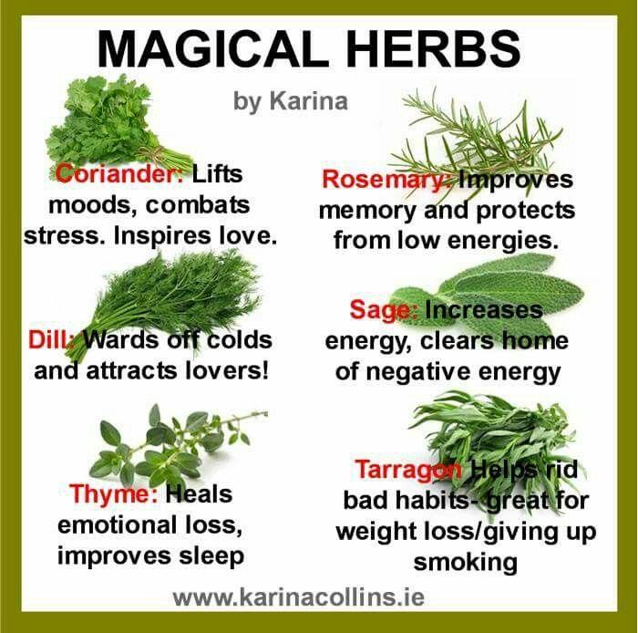 Magical Herbs | Random stuff | Healing herbs, Herbs, Magic herbs