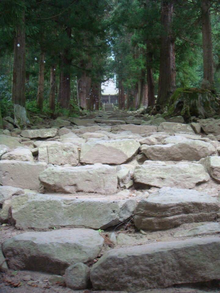 Nagano Prf.