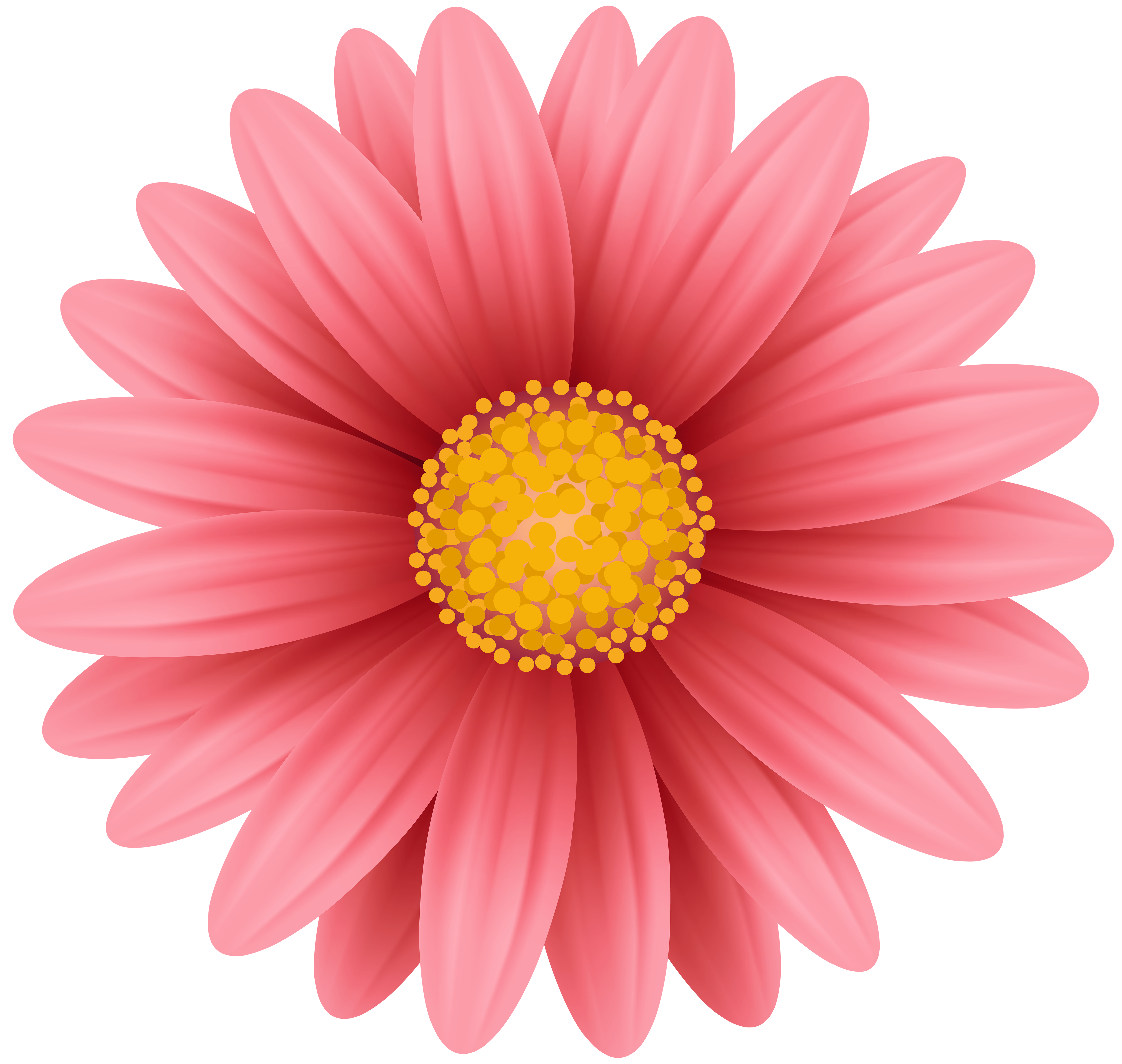 Red Flower Png Clip Art Gallery Yopriceville High Quality Images And Transparent Png Free Clipart Flower Border Clipart Red Flowers Flower Clipart