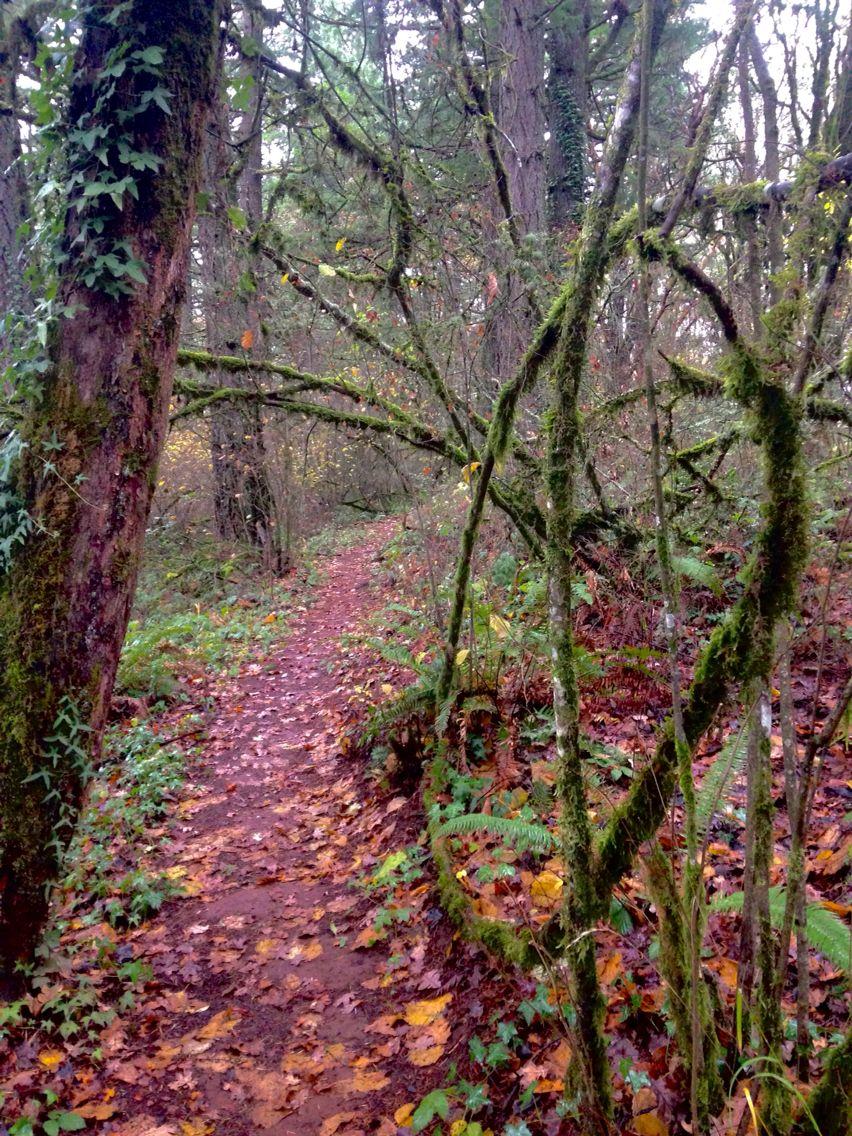 Skyline Trail, Salem Oregon