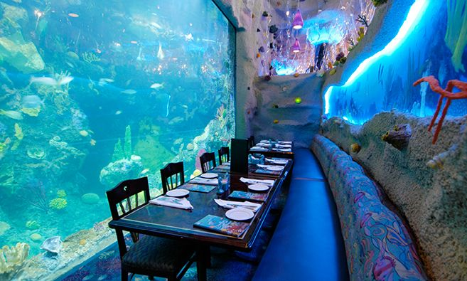 Anything Goes At These Fun Funky Themed Restaurants In