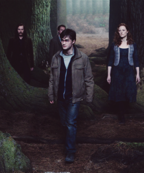 James Potter, Lily Potter, Harry Potter, Remus Lupin, and ...