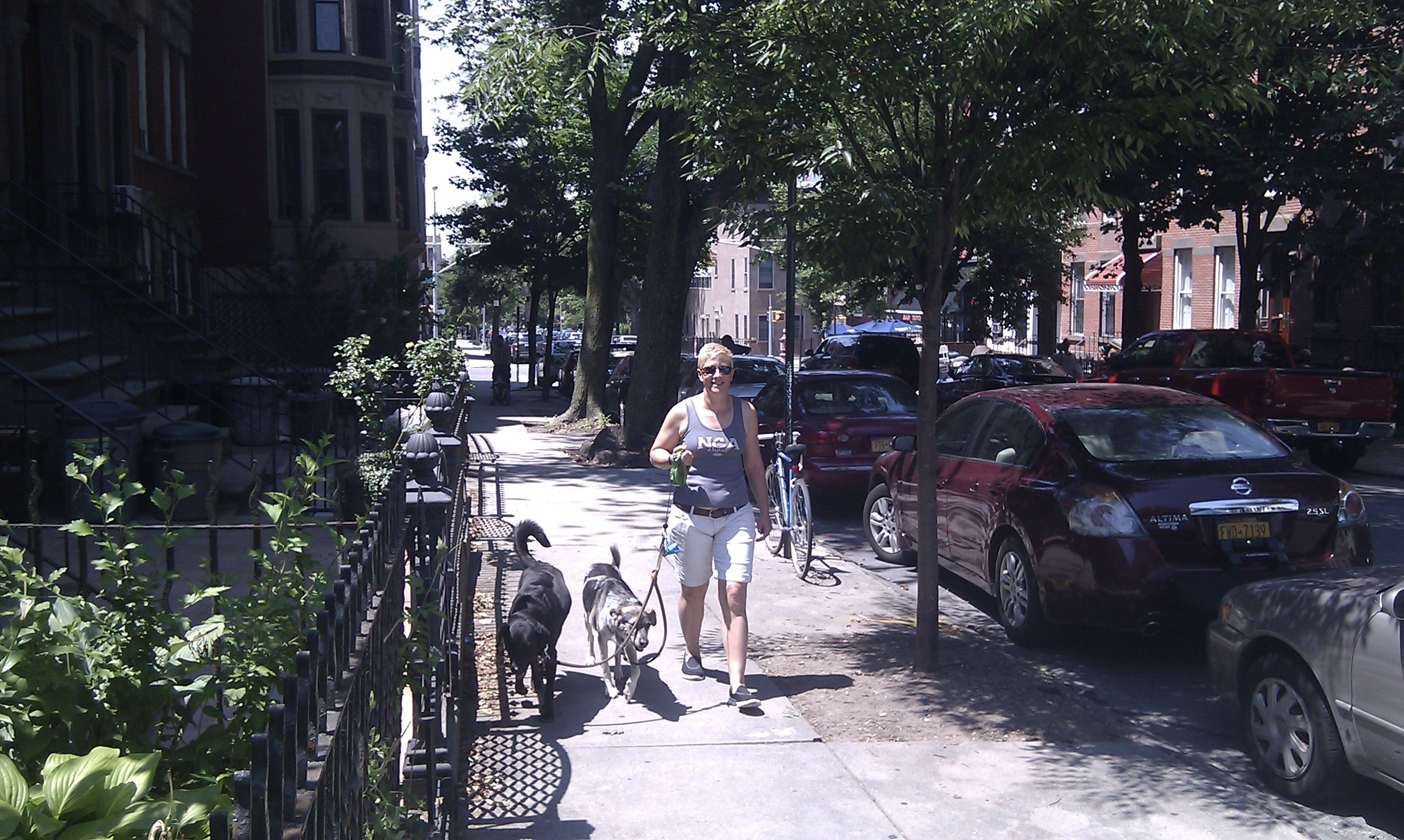 House Sitting at Park Slope in Brooklyn, NY