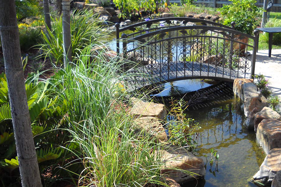 backyard stream with bridge | Ponds backyard, Backyard ...
