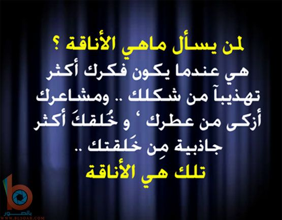 حكم وامثال بالصور27 Islam Facts More Than Words Neon Signs
