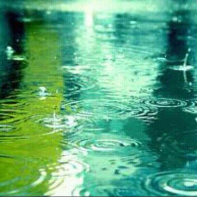 비오는 날 마음이 차분해지는 순간들 가끔은 사색에 잠겨보자고....
