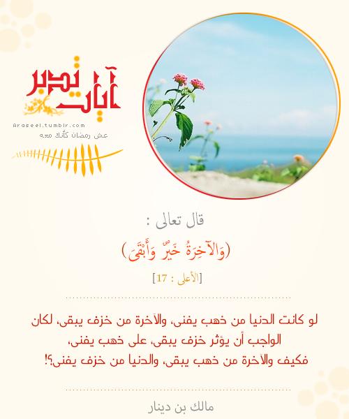 تدبر آيات Islamic Quotes Quran Quotes Islamic Information