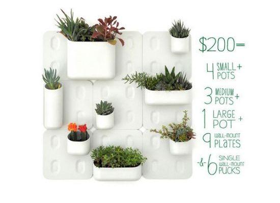 5 Innovative Indoor Garden Designs