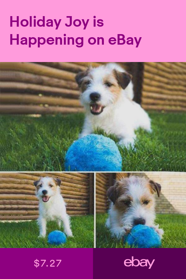 Toys Pet Supplies Ebay Cat Pet Supplies Pet Toys Interactive