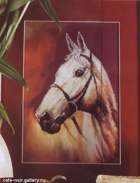 Gallery.ru / Фото #2 - лошадь на красном фоне - muha-cc ...