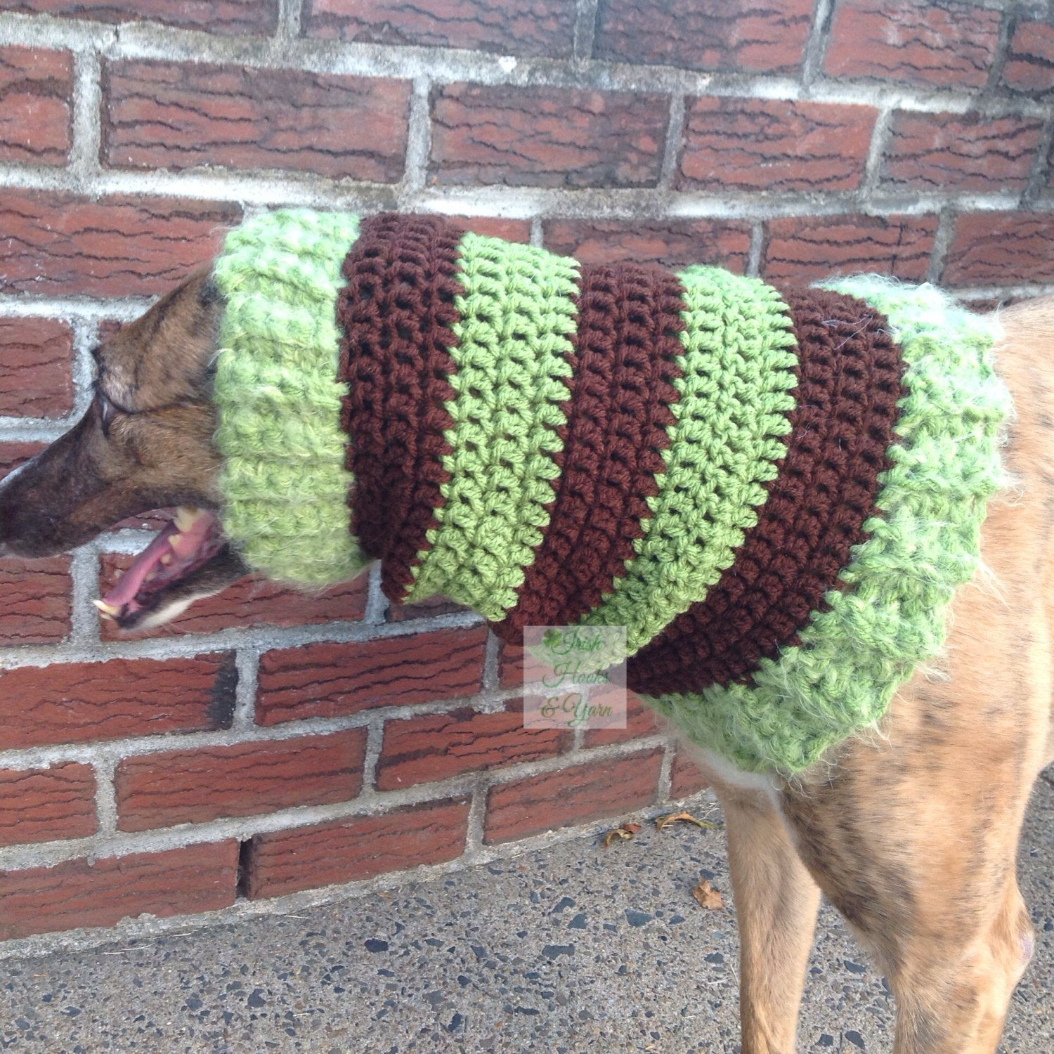 Greyhound snood and dogwalker hat snood afghans and crochet greyhound snood and dogwalker hat pinned by pin4etsy bankloansurffo Images