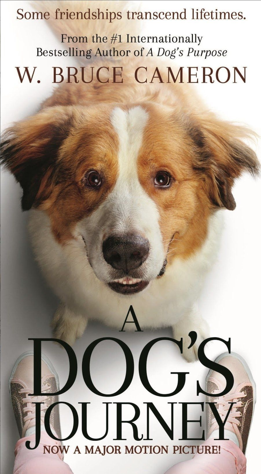 Book review a dogs journey by w bruce cameron a dogs