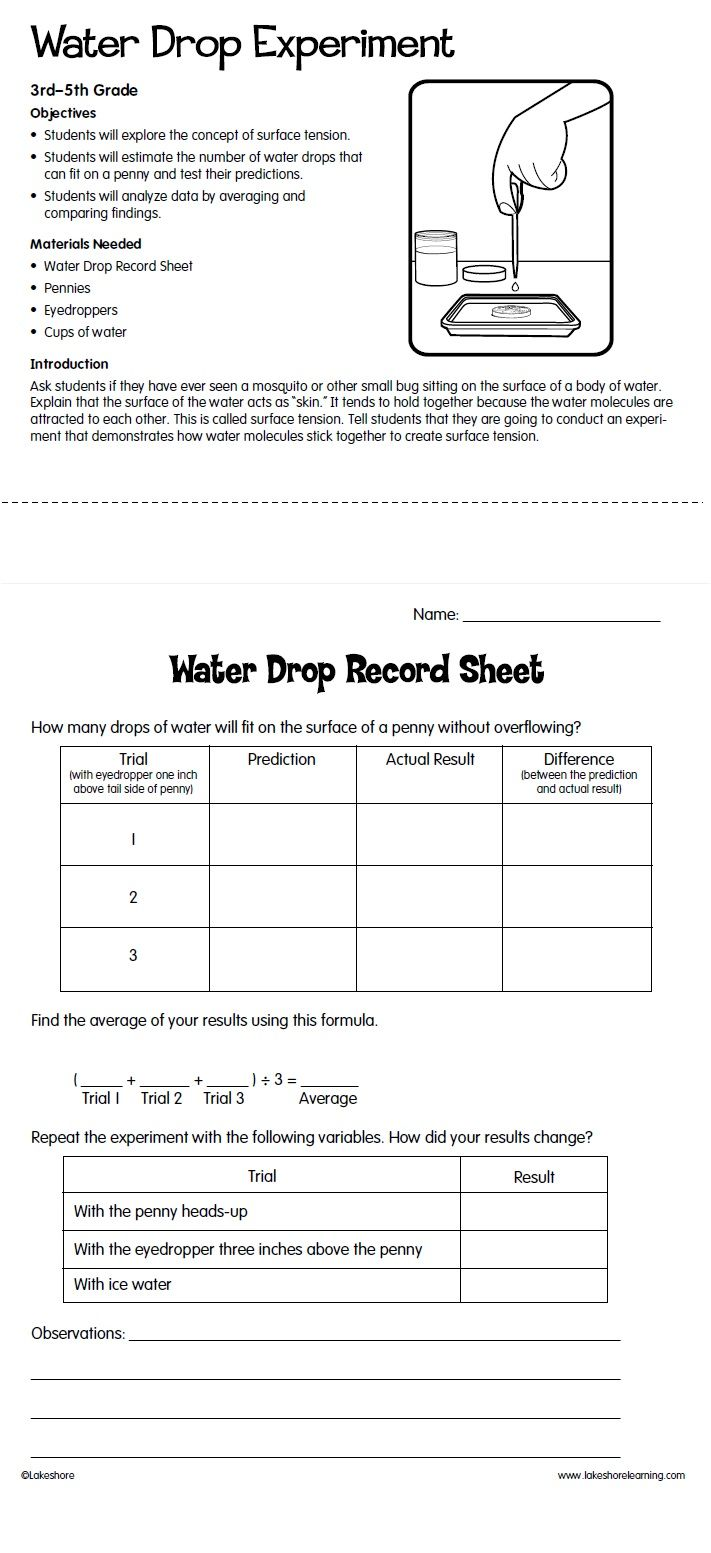 Water Drop Experiment from Lakeshore Learning: Children estimate the ...