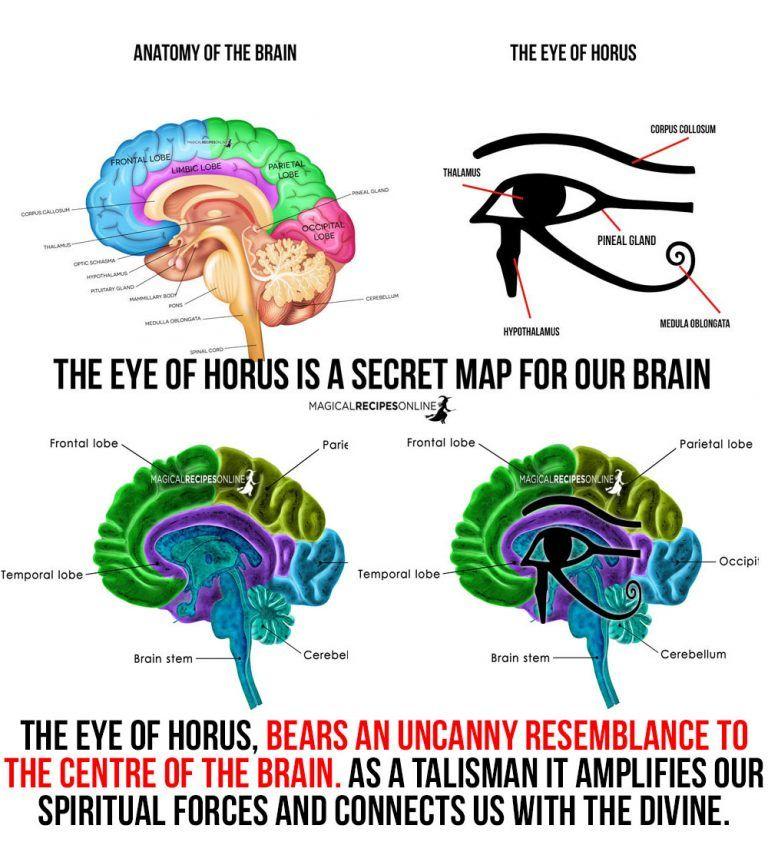 What S That Symbol Eye Of Horus Eye Of Ra Wadjet Eye Of