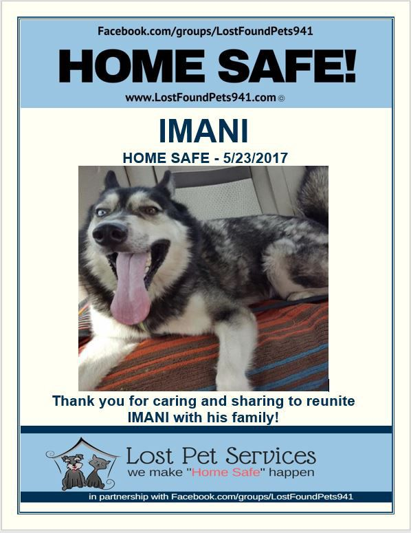 Imani is Home Safe! #WeMakeHomeSafeHappen #LostPetServices - lost pet poster