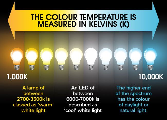 Led Bulb Temperatures Infographic Lamp Interior Lighting Closet Lighting