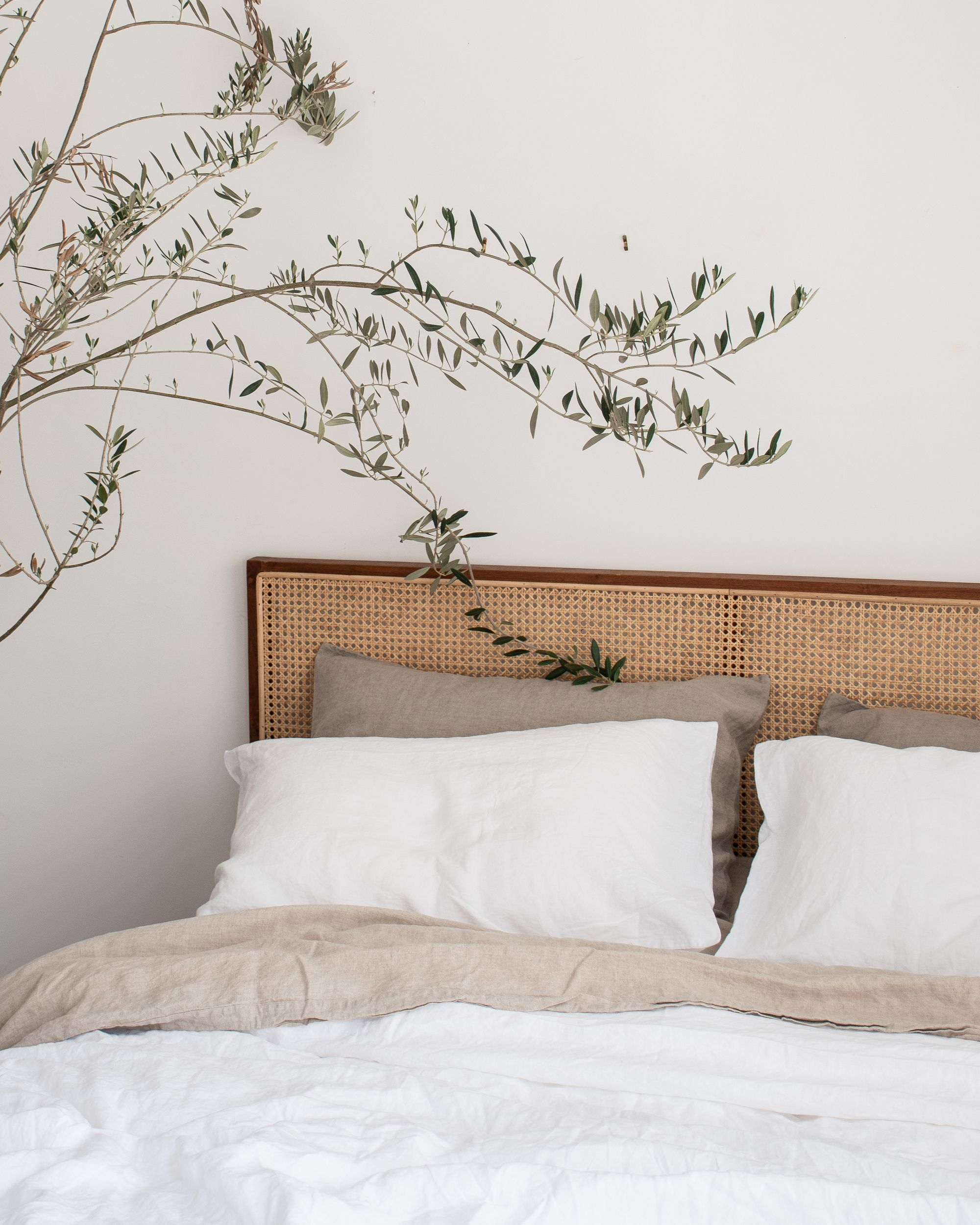 Photo of herbal house decor