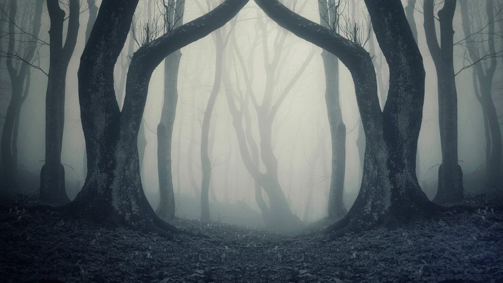 Creepy Background Pictures 70 Full Hd New Pictures Newhomedecors Scary Backgrounds Creepy Backgrounds Spooky Trees Horror background hd images for