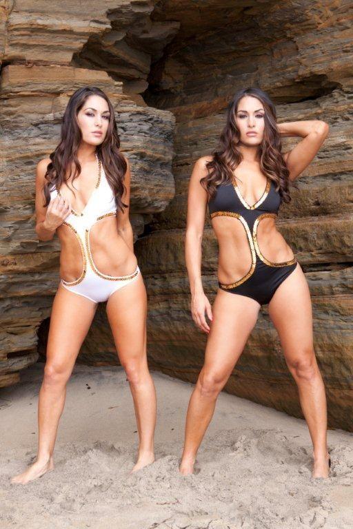 Bella Twins Wwe Events Wzr Online Photos New Bikini Shots Of The Bella Twins