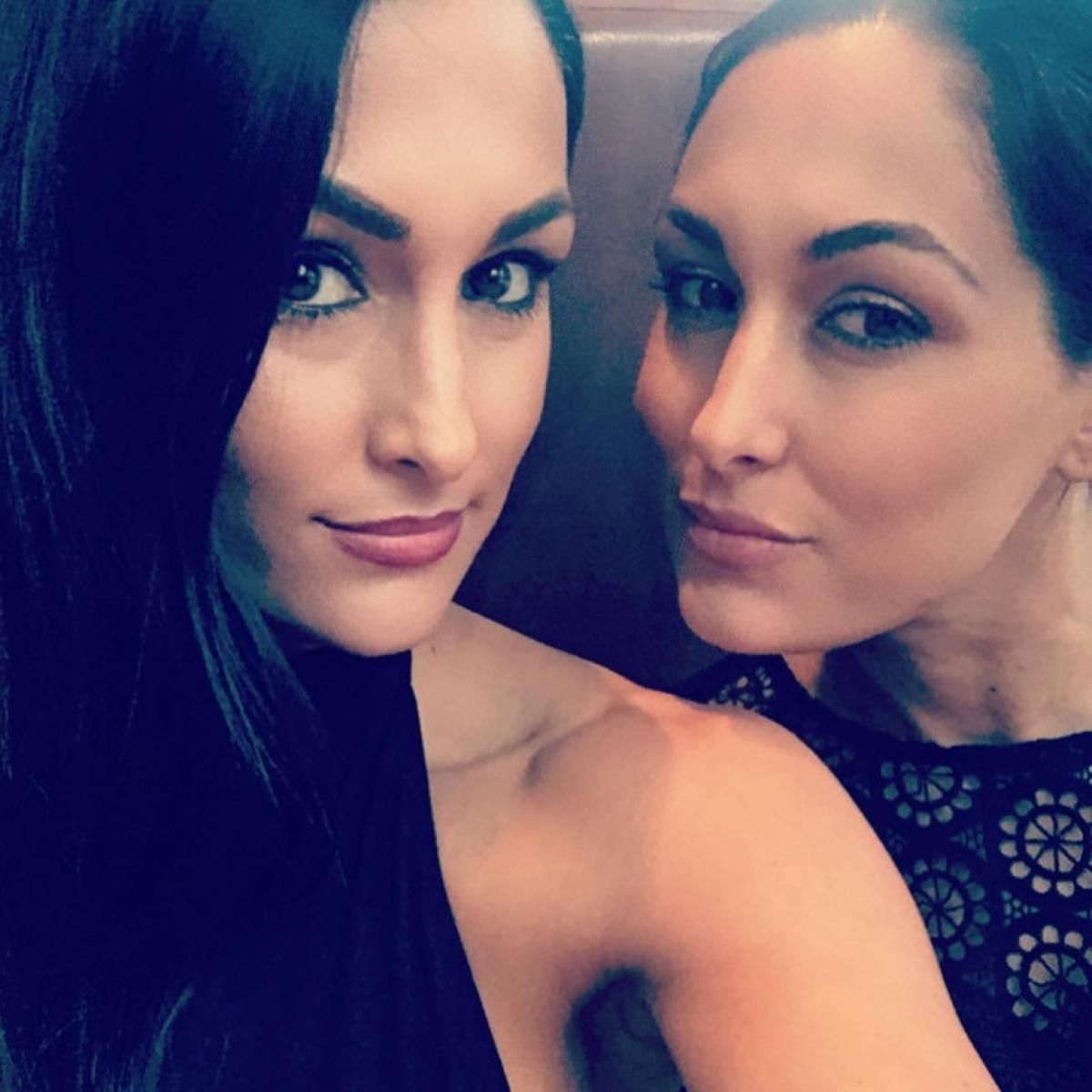 Instagram The Bella Twins nudes (54 foto and video), Pussy, Sideboobs, Instagram, butt 2018