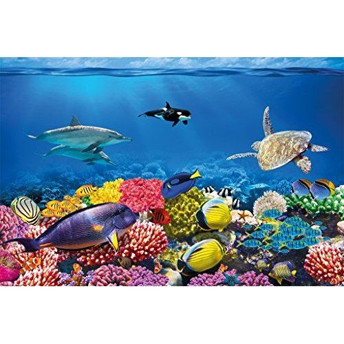 Wall26 Large Wall Mural Underwater Scene With Coral