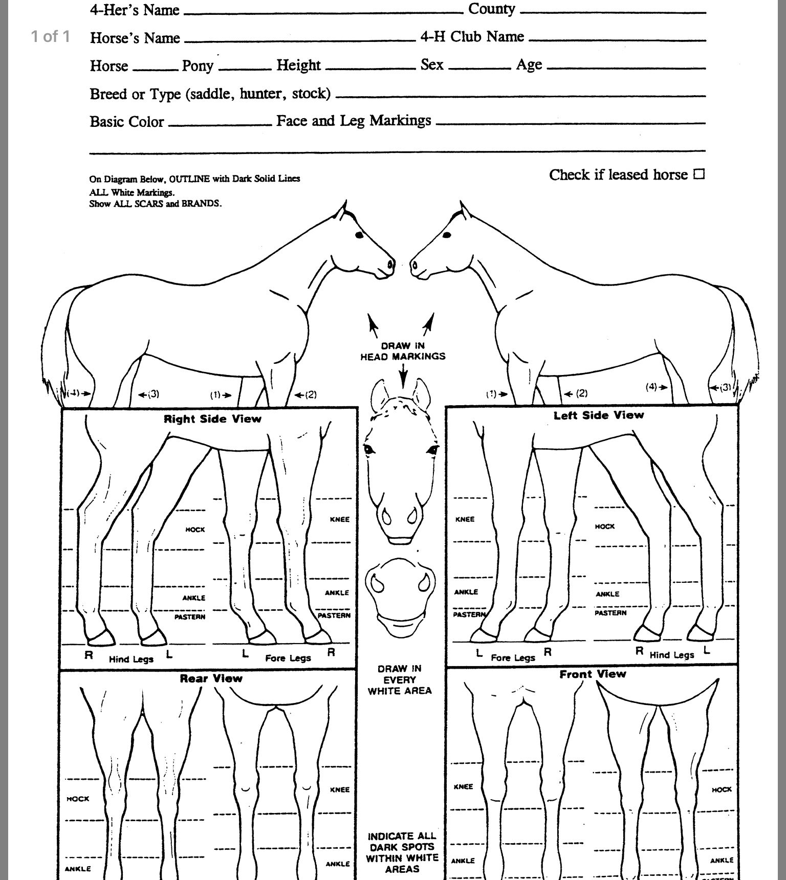 Pin By Natalie Smith On Horse Work Animal Science Horses Chart [ 1720 x 1536 Pixel ]