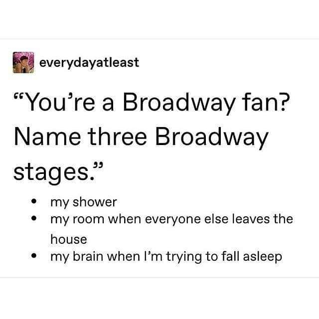 "Theatre Life Problems™ on Instagram: ""If you had to sing an entire musical theatre album from memory, which one would it be? - @everydayatleast . . . . . . . . . . . . . . . . .…"""