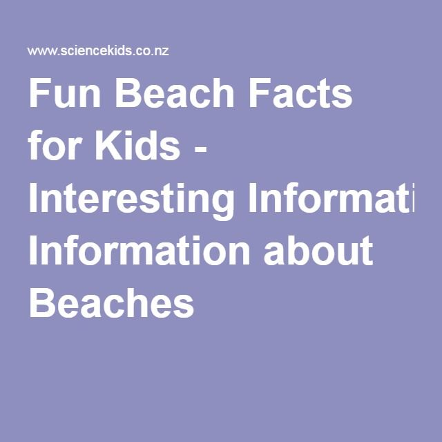Fun Beach Facts For Kids Interesting