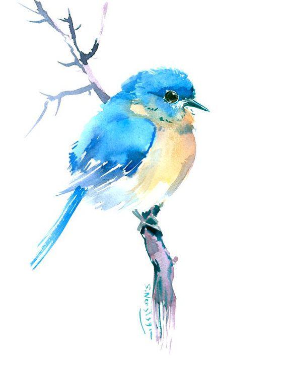 Eastern Bluebird | Pinturas de acuarela, Pájaro y Acuarela