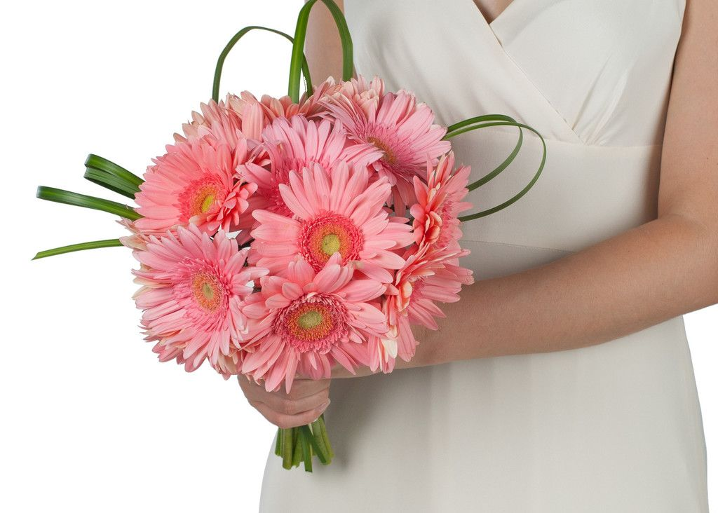 Pink And Blush Gerber Daisy Bouquets