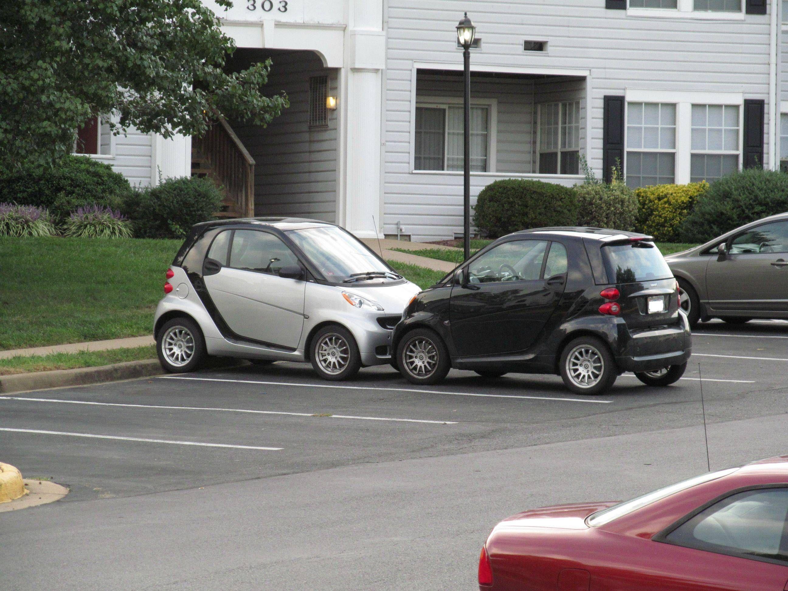 My Considerate Neighbors Smart Car Car Memes Car Humor