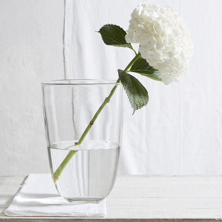 White Flowers In Henry Dean Vase Flowers Plants Pinterest Dean
