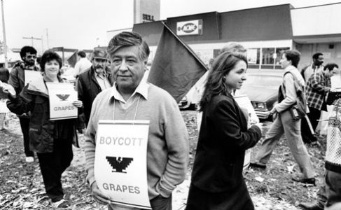 review and analysis of cesar chavez How a hate group is rewriting history to make cesar chavez's birthday  is a contributor to the conservative publication national review and has repeatedly used his  analysis and breaking .