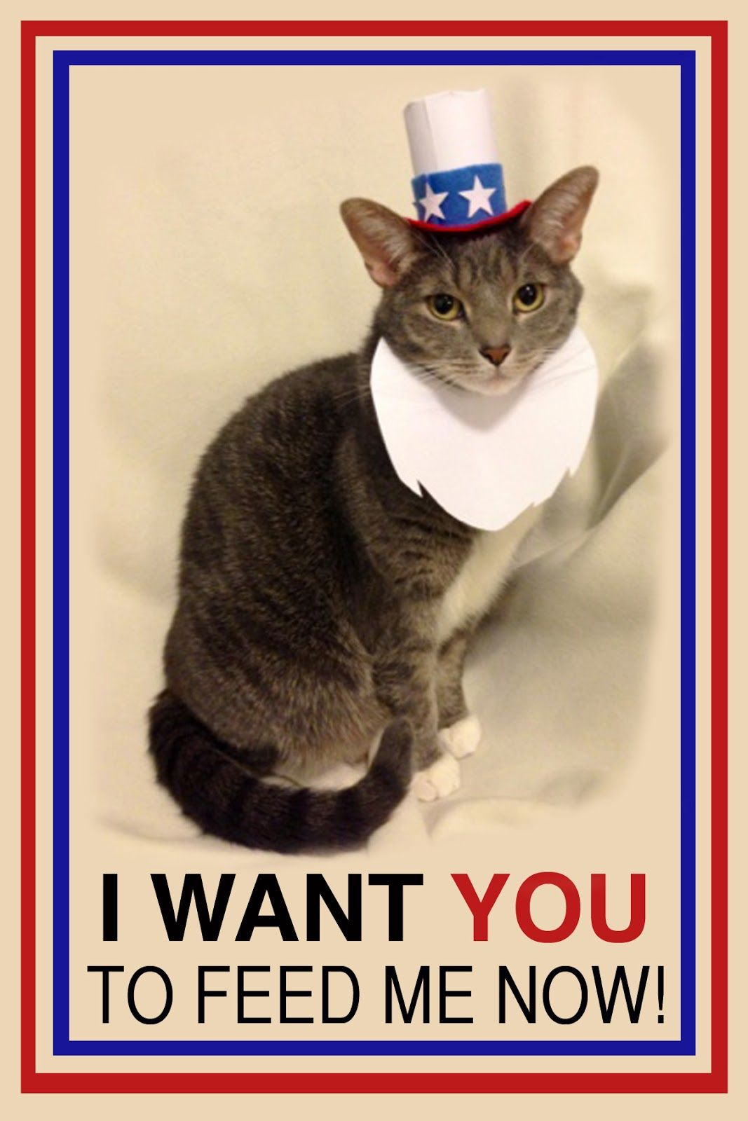 Happy Presidents' Day! I Want You Cat To Feed Me Now