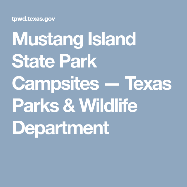 Mustang Island Beach: Mustang Island State Park Campsites