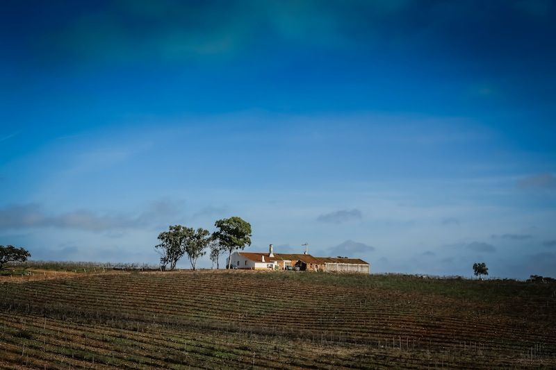 Another Day, Another Castle (Beja and Mértola, Portugal) - via Wander Tooth 07.01.2014 #Alentejo #Photo #Travel