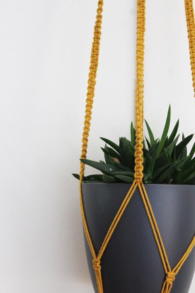 Hoe Maak je een Macramé Plantenhanger?