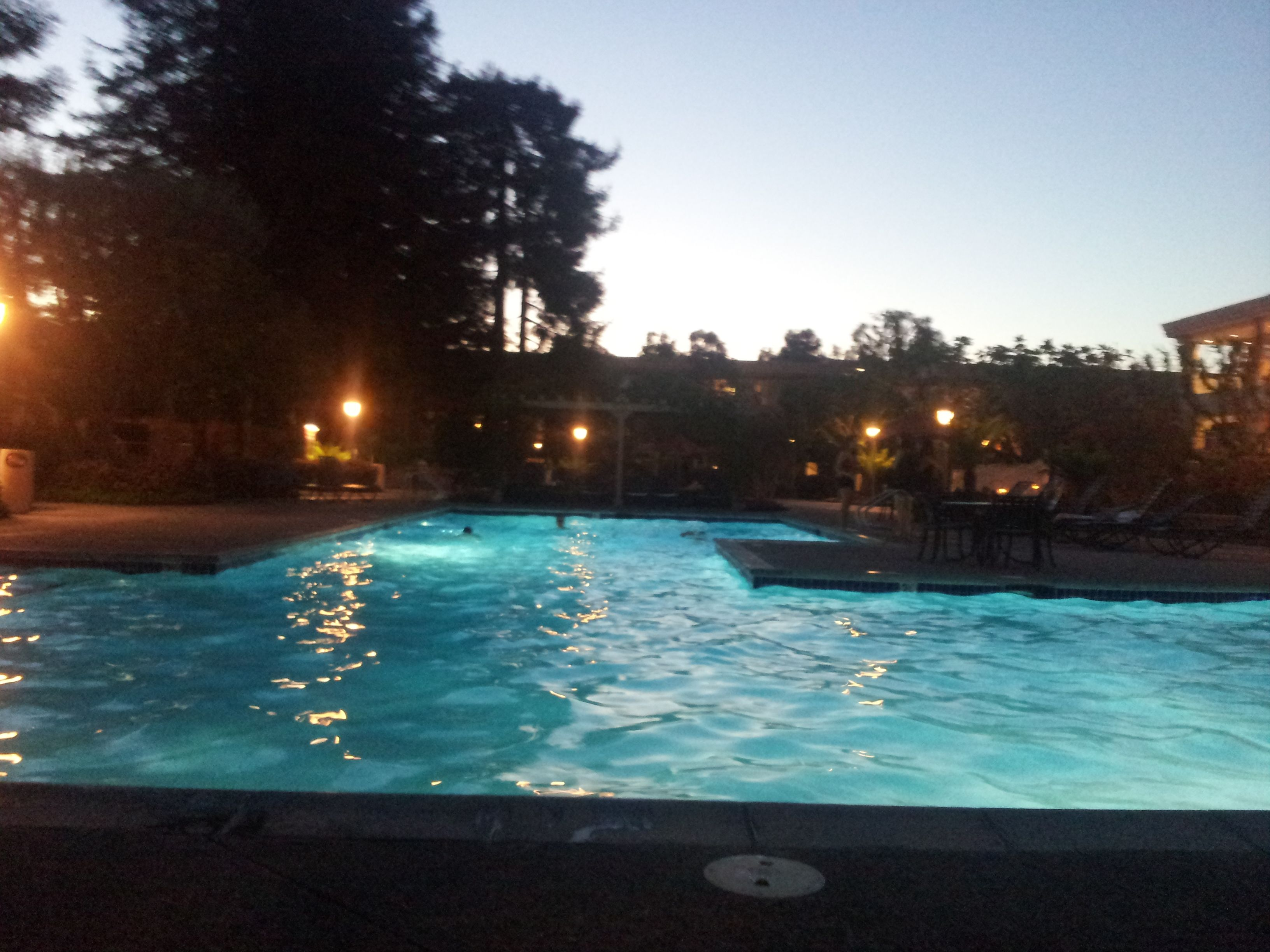 Swimming Pool In Mountain View Silicon Valley