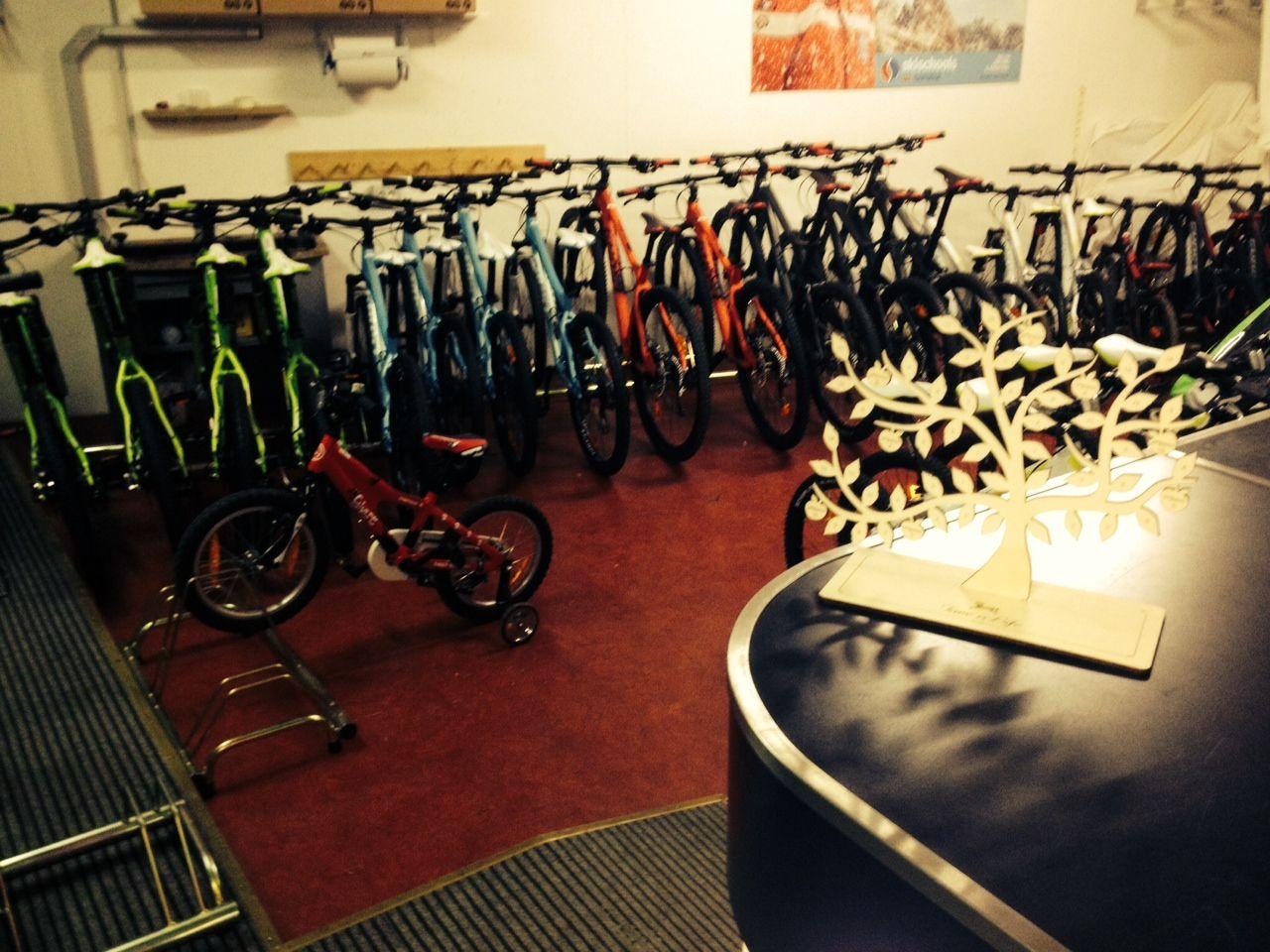 Il nolegio bike del Cavallino: noleggio una bici per una passeggiata sportiva!Tempo di sport!