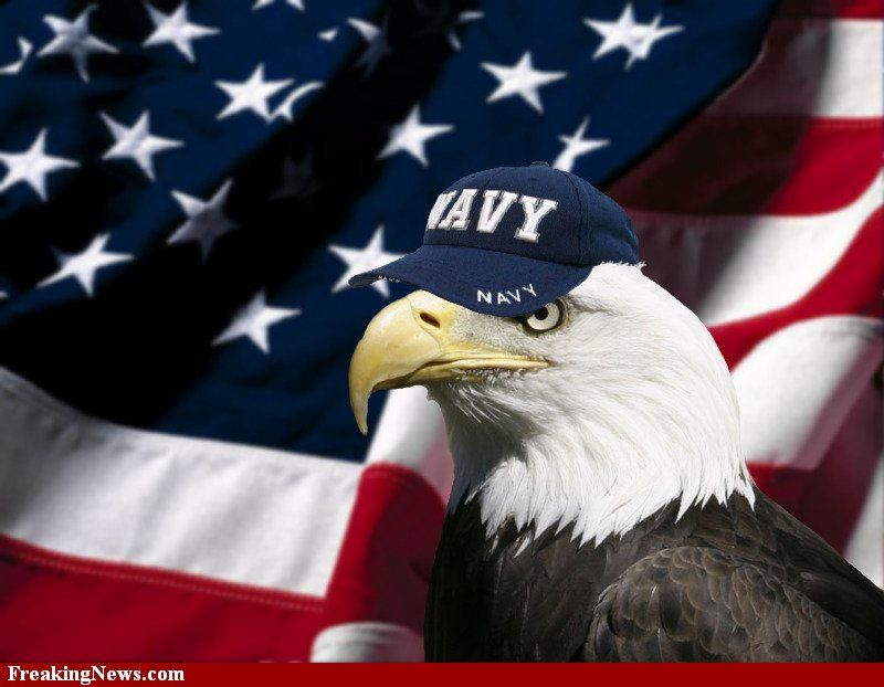 Independence Day Pictures Freaking News United States Navy Navy Day Navy