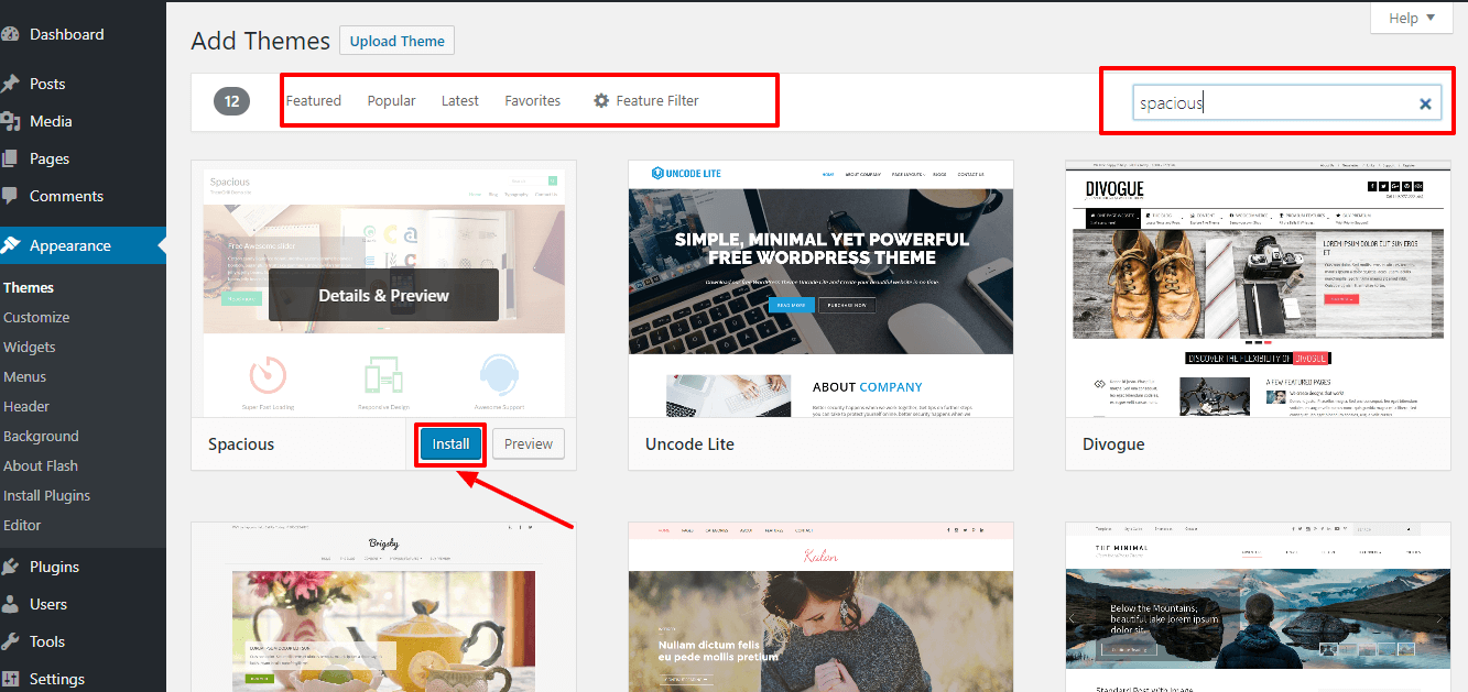 How To Install A Wordpress Theme  Ultimate Guide For