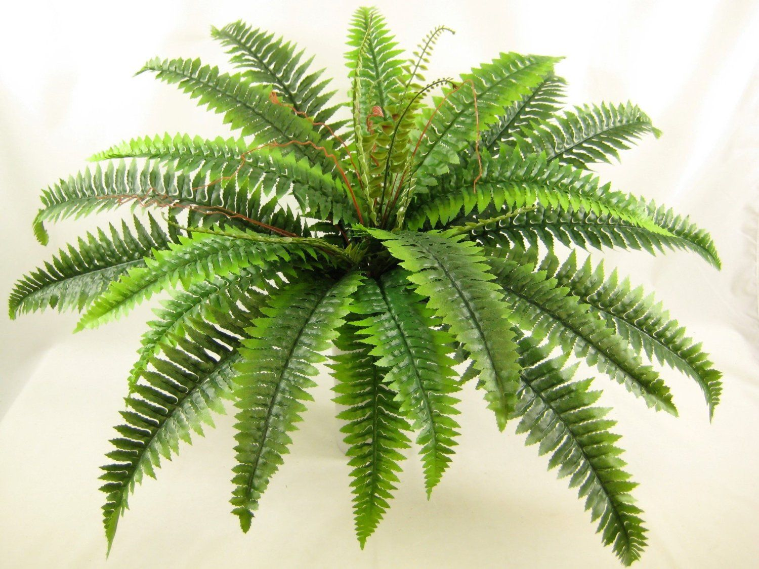 74cm Artificial Silk Foliage Large Boston Fern From Gt Decorations Co Uk