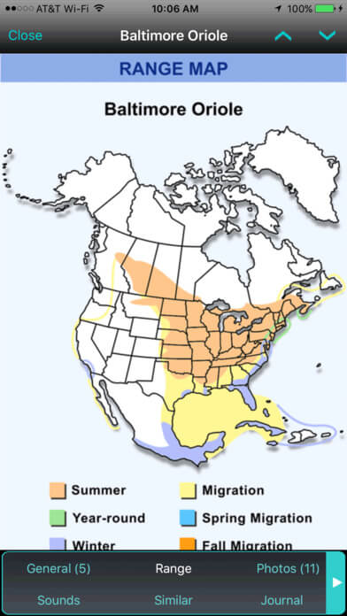 Baltimore Oriole Migration Map 2019 : baltimore, oriole, migration, Watching, (2019), Apps,, Birds,