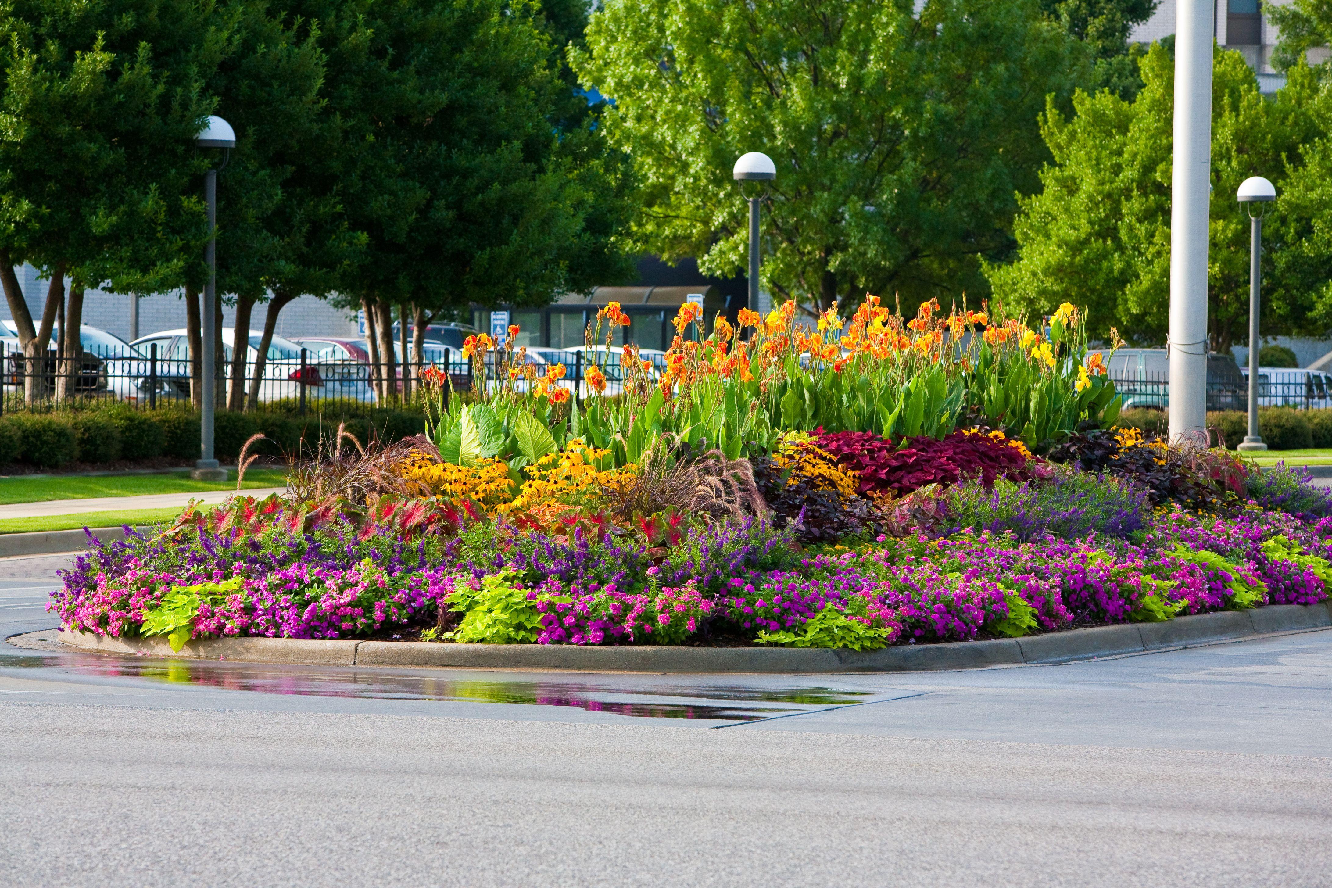 Colorful Flowers In Birmingham Al Perennial Garden Plans Perennial Garden Design Garden Planning